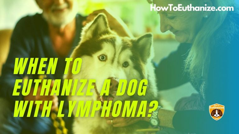 When To Euthanize A Dog With Lymphoma?